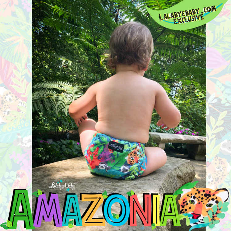 Copy of Amazonia IG